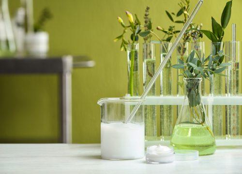 植物オイルが選べる!乳液づくり体験